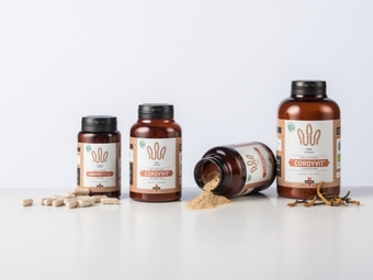 cordyceps products with dry cordyceps